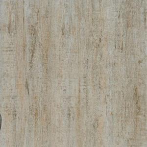600×600 Zed Oak